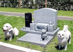 チワワ ペット霊園 お墓
