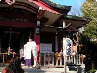 チワワ 神社